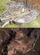 The-Mycenaean.jpg
